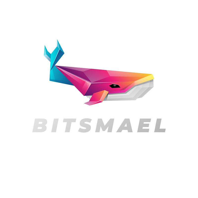 BITSMAEL 1
