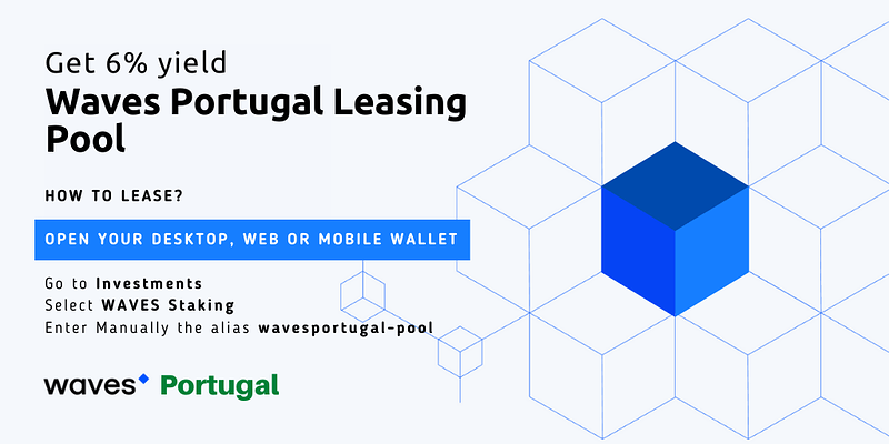 Waves Portugal Leasing Pool (2)