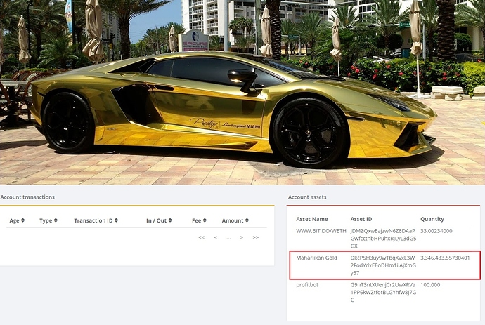 MGOLD%20is%20the%20Lambo%20of%20Crypto